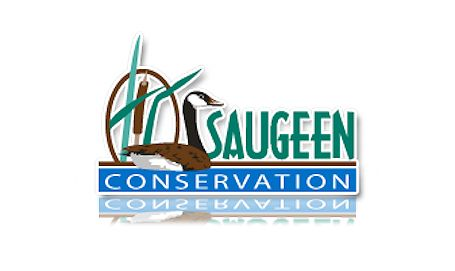 Flood watch continues in Saugeen watershed